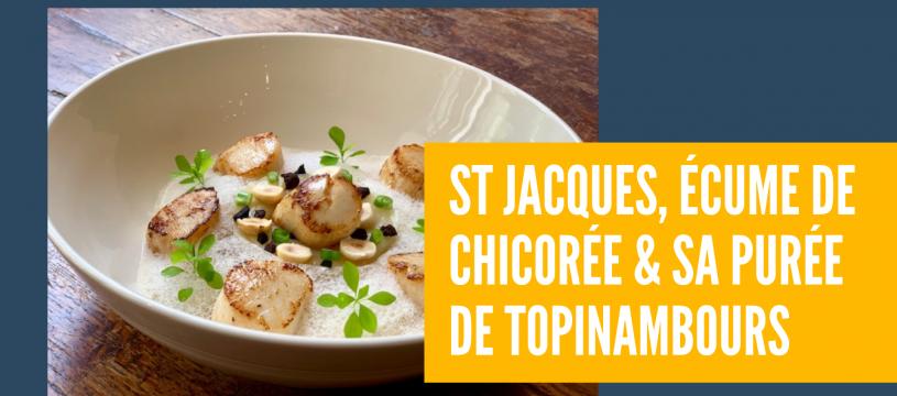 St Jacques, écume de chicorée & sa purée de Topinambours